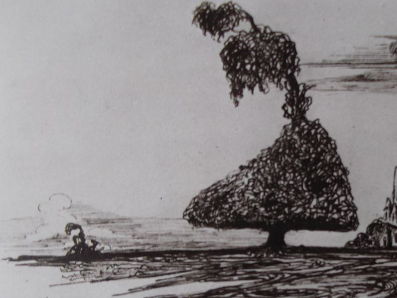 la-nature-luttes-contemplations